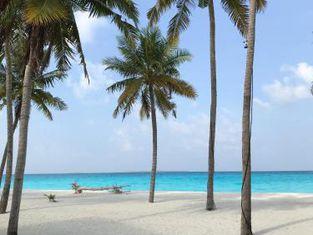 Paradise Hondaafushi Island Resort & Spa