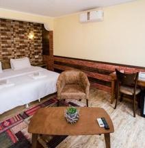 Metekhi's Galavani Hotel