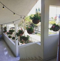 Palmira Hostel