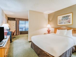 OYO Hotel Monroe La I-20