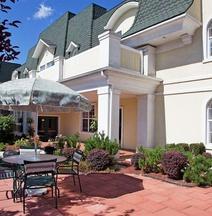 Comfort Inn & Suites Allen Park/Dearborn