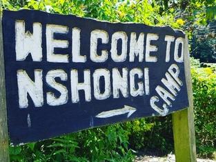 Nshongi Forest Camp