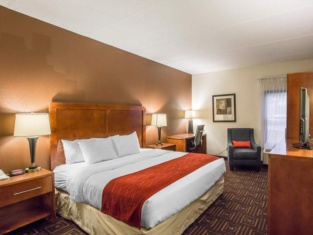 Comfort Inn Downtown Chattanooga