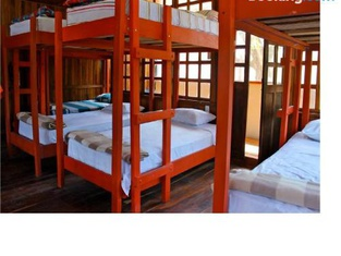 Coral Reef Surf Hostel and Camp