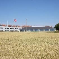 Ærø Hotel - Skipperbyen Marstal