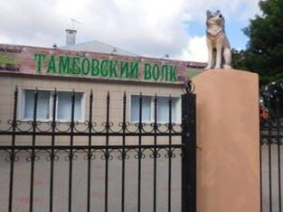 Tambovskij Volk Hostel