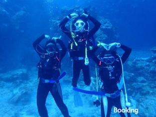 Just Wild Dive Center- Green Island