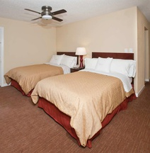 Homewood Suites By Hilton Charlotte-North/Univ Research Park
