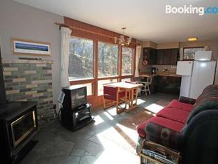 Electra Lake - 761 Spruce Mesa Home