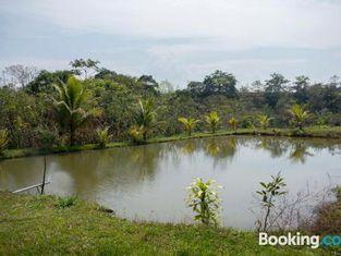 Selva Mayo Ecolodge