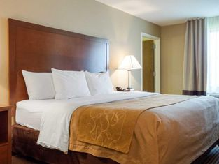 Comfort Inn & Suites Watford City